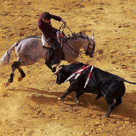 Corrida a cavallo